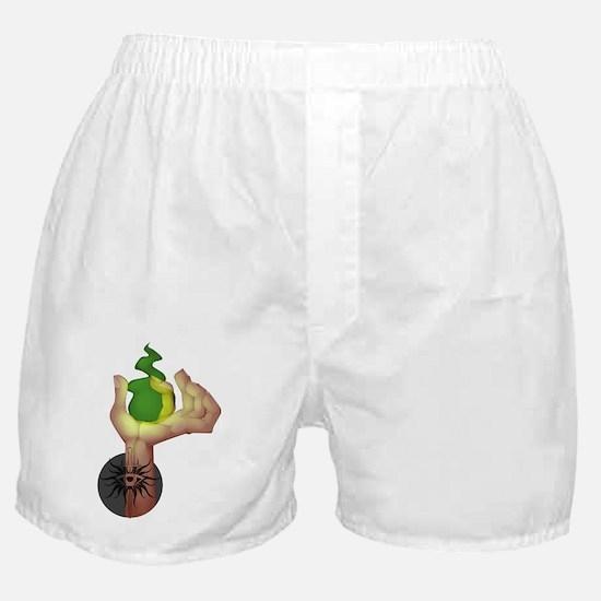 Cool Dragon age Boxer Shorts