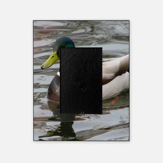 Cute Duck Picture Frame