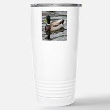 Mallard Duck On Scudder Stainless Steel Travel Mug