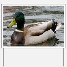 Mallard Duck On Scudder Pond Yard Sign