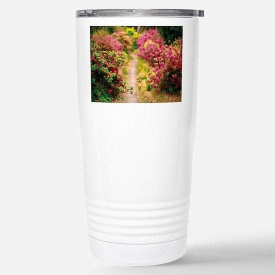 Footpath with azaleas Travel Mug