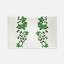 Ivy Vines Magnets