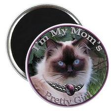 Ragdoll Wears Necklace Magnet