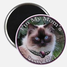 Ragdoll Wears Necklace Magnet