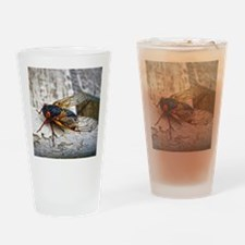 Red Eyed Cicada Drinking Glass