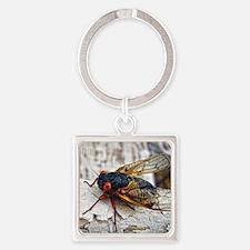 Red Eyed Cicada Keychains
