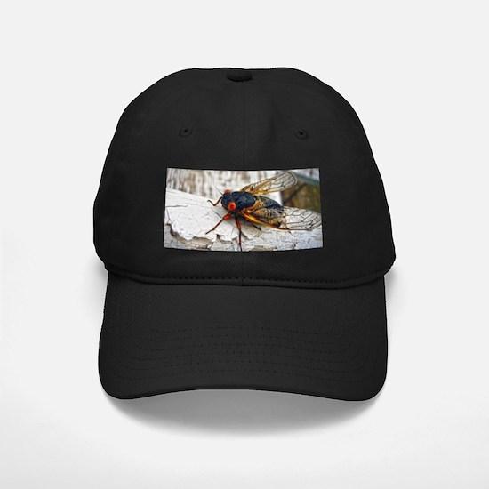 Red Eyed Cicada Baseball Hat