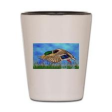 Mallard Duck in Flight Shot Glass