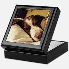 Unique Bird dog Keepsake Box