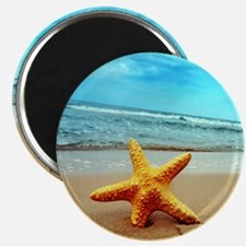 Starfish On The Beach Magnets