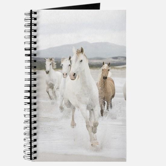 Horses Running On The Beach Journal