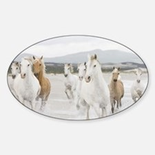 Horses Running On The Beach Decal