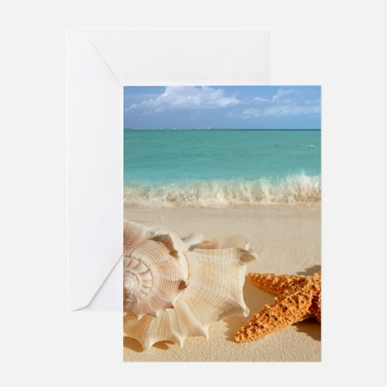 Seashell And Starfish On Beach Greeting Cards