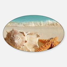 Seashell And Starfish On Beach Decal