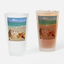 Seashell And Starfish On Beach Drinking Glass
