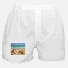 Seashell And Starfish On Beach Boxer Shorts