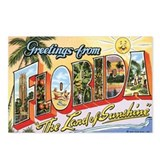 Florida hurricane postcards Postcards