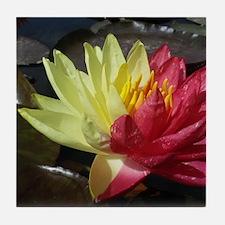 Lotus Flower Tile Coaster