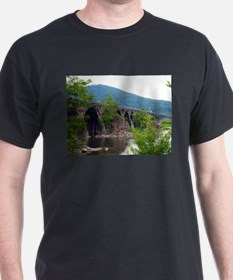 Old Time Bridge T-Shirt