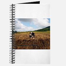 Puppy On Hay Journal
