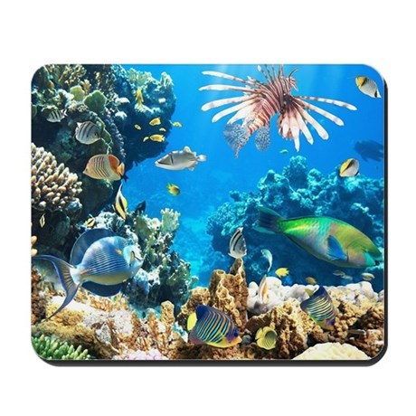 Tropical fish mousepad by bestgear2 for Jan s tropical fish