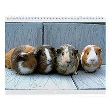 guinea pig Wall Calendar
