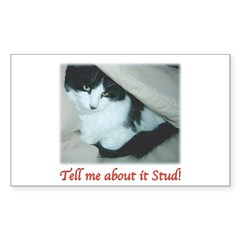 Valentine Kitty Sticker (Rectangle)