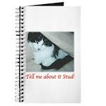 Valentine Kitty Journal