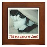 Valentine Kitty Framed Tile