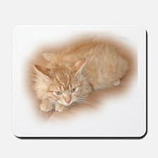 Orange Tabby Kitty Mousepad