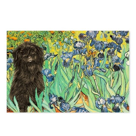 Irises With Affenpinscher Postcards (Package of 8)