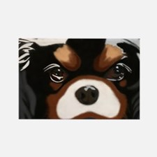 Cute Tri color cavalier king charles spaniel Rectangle Magnet
