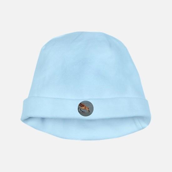 Sandpiper baby hat
