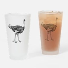 Cute Ostriches Drinking Glass
