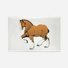 Horse with white legs Magnets