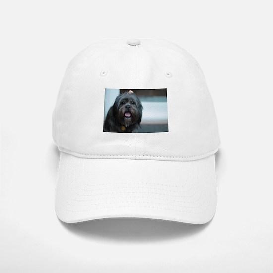 smiling lhasa type dog Baseball Baseball Cap