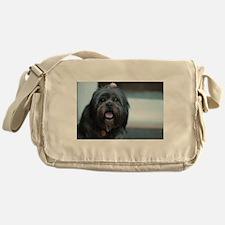 smiling lhasa type dog Messenger Bag