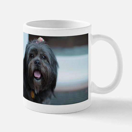 smiling lhasa type dog Mugs