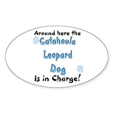 Catahoula Charge Oval Decal