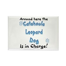Catahoula Charge Rectangle Magnet