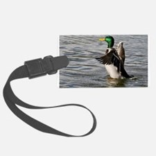 Mallard Duck Drake Luggage Tag