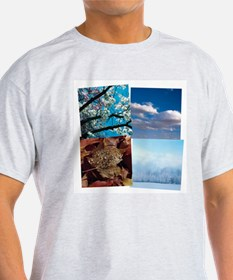 Cool Four seasons T-Shirt