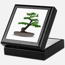 Bonsai tree Keepsake Box