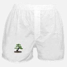 Bonsai tree Boxer Shorts
