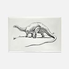 Dinosaur brontosaurus Magnets
