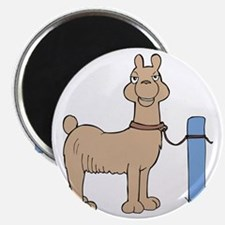 Llama cartoon Magnets