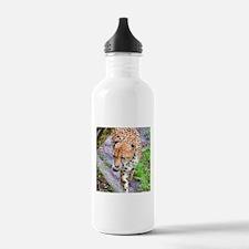 CHeetah walking by tree Water Bottle