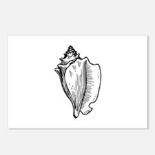 Conch Postcards (Package of 8)