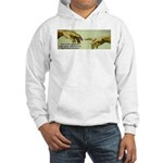 Freedom is a Divine Gift Hooded Sweatshirt
