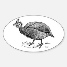 Guinea fowl Decal